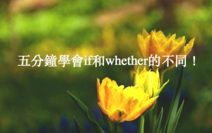 【whether 英文用法】whether 和 if 的差別你知道嗎?
