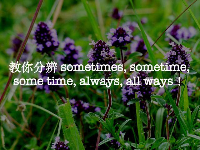 thyme-167467_640
