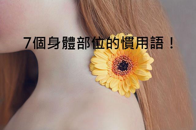 flower-1290639_640