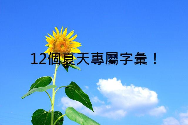 summer-368224_640