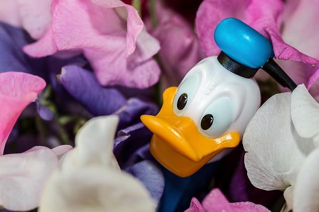 donald-duck-973226_640