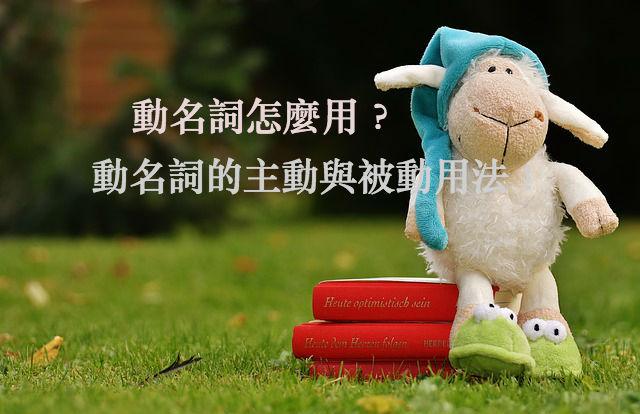 sheep-1596376_640