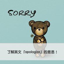 apologize 中文