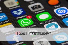app 中文
