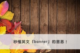banner 中文