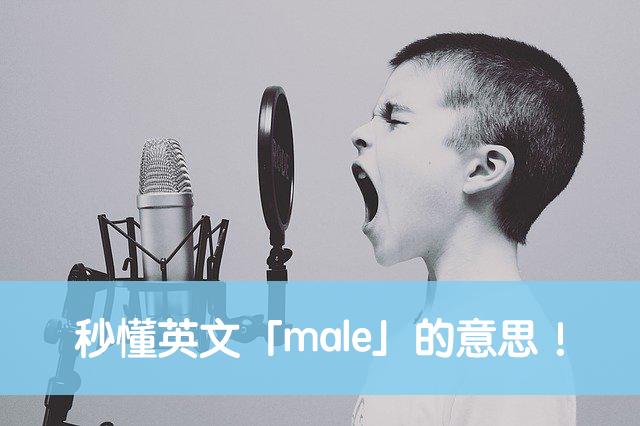 male 中文
