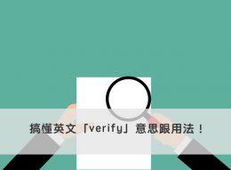verify 中文