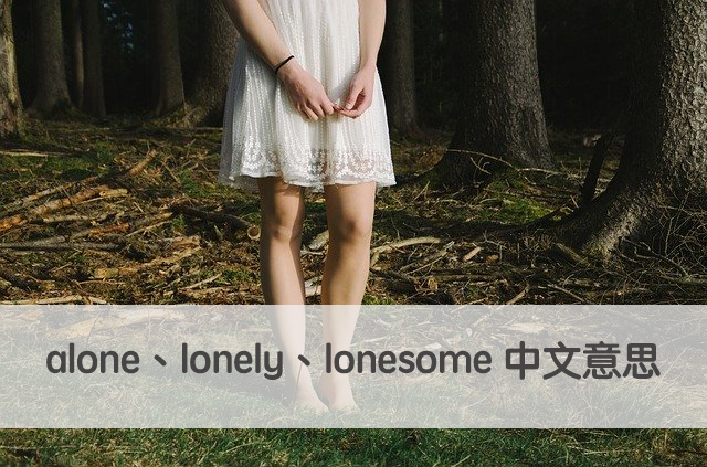 alone lonely lonesome 中文意思 用法
