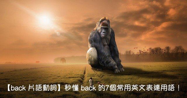 back 中文意思