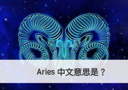 Aries 中文意思