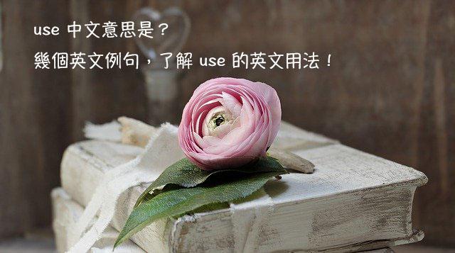 use 中文意思 用法