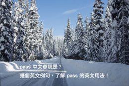 pass 中文意思