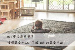 act 中文意思