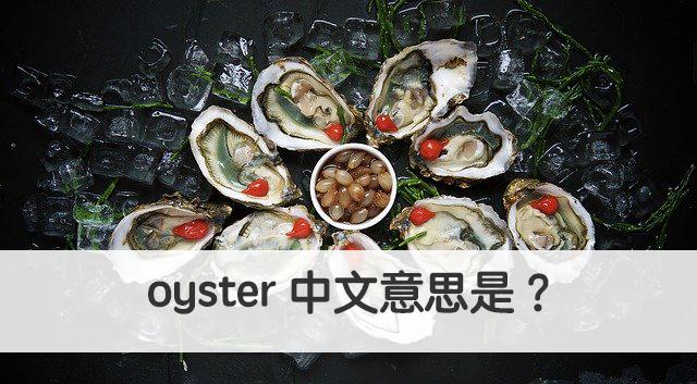 oyster 中文意思