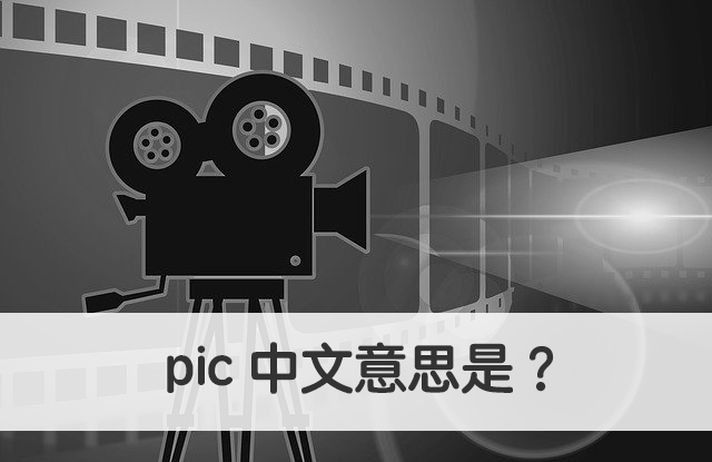 pic 中文意思