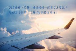 fly 中文意思