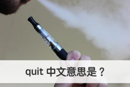 quit 中文意思