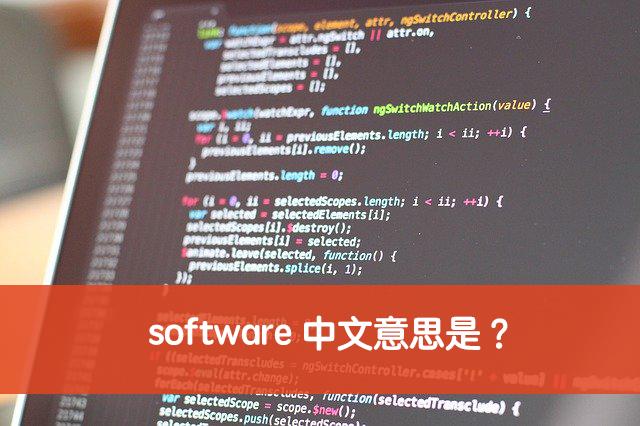software 中文意思
