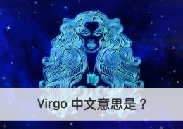 virgo 中文意思