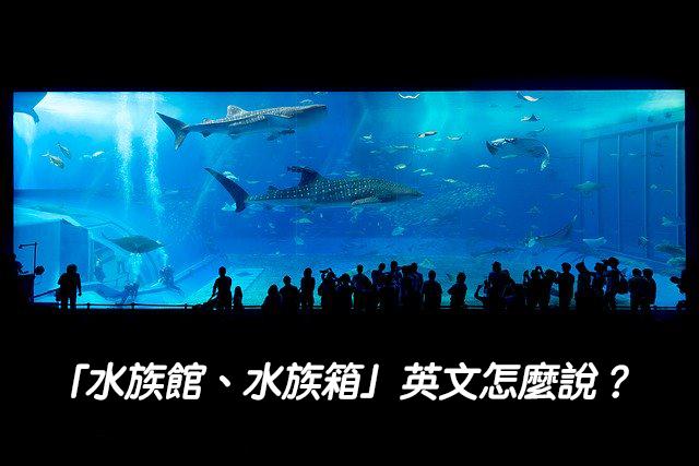 「水族館、水族箱」英文