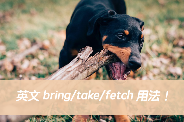 英文 bring/take/fetch 用法