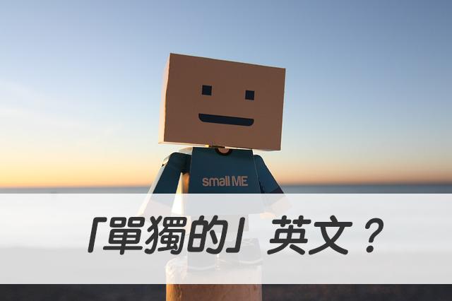 「單獨的」英文?standalone/individual/sole 中文意思一次搞懂!