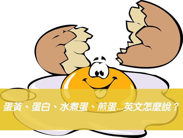 蛋黃、蛋白、蛋殼、水煮蛋、煎蛋...英文怎麼說?