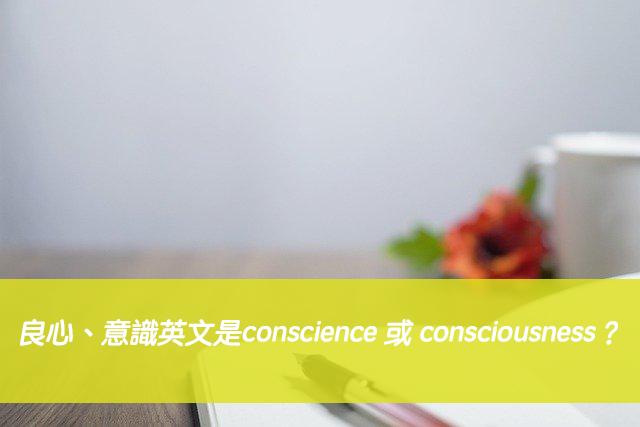 「良心、意識」英文是conscience 或 consciousness?中文意思差別?